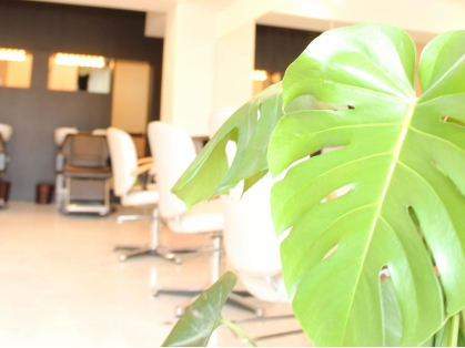 MOANA hair 【モアナ】(池袋・巣鴨・田端・目白台/美容室)の写真
