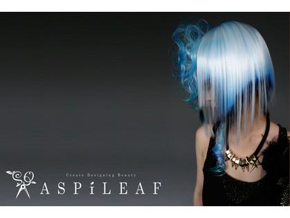 ASPILEAF(神楽坂・市ヶ谷・四ッ谷/美容室)の写真