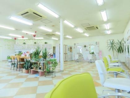 美容室リップル(福島・郡山・いわき・会津若松/美容室)の写真